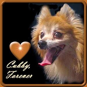 R.I. P. Cubby