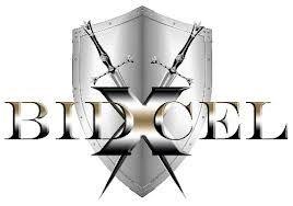 Bidxcel