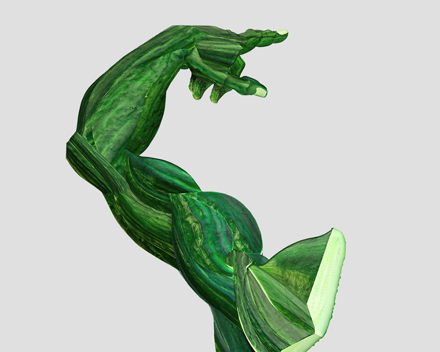 Blog Medioambiente.org : Anatomía humana vegetal