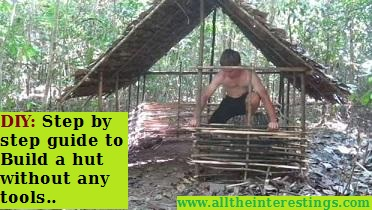 Viral: Step by step guide to Build a hut without any tools - DIY hut walkthrough