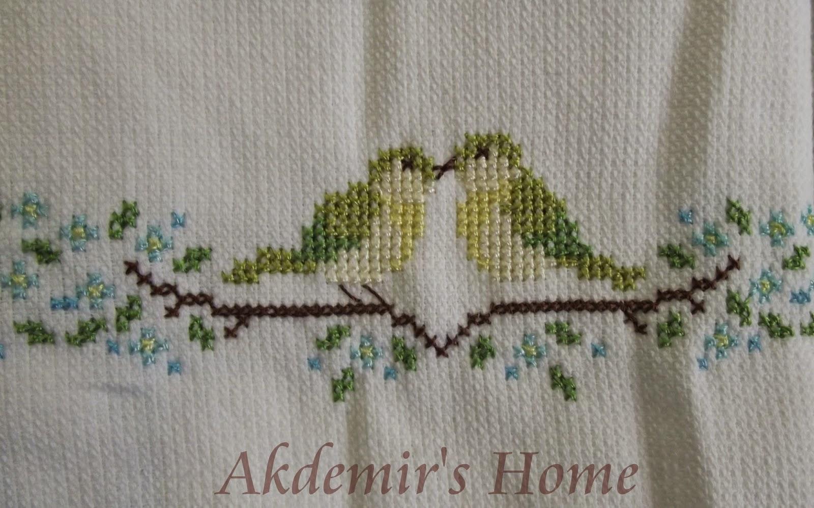 Akdemir's Home