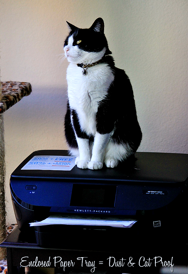 The HP Envy 5660 All-In-One Printer satisfies both cat and owner with thoughtful wireless design, free printables, an interative touch screen display, smart ink service, and enclosed paper tray. #HPSmartMoms