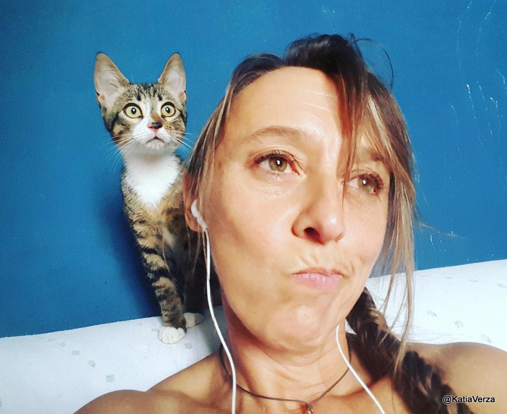Un Gatto per la testa