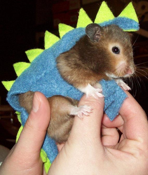 Hamster Halloween Costume Dinosaur Costume For Hamster