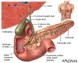 Gallbladder Symptoms