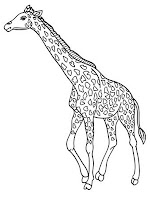 Realistic Geraffe Printable Coloring Pictures