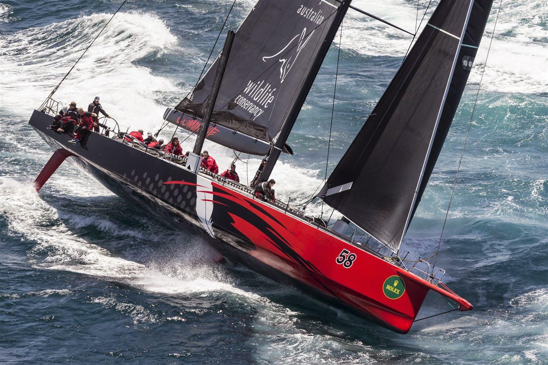 Comanche, 2e de la Sydney - Hobart 2014