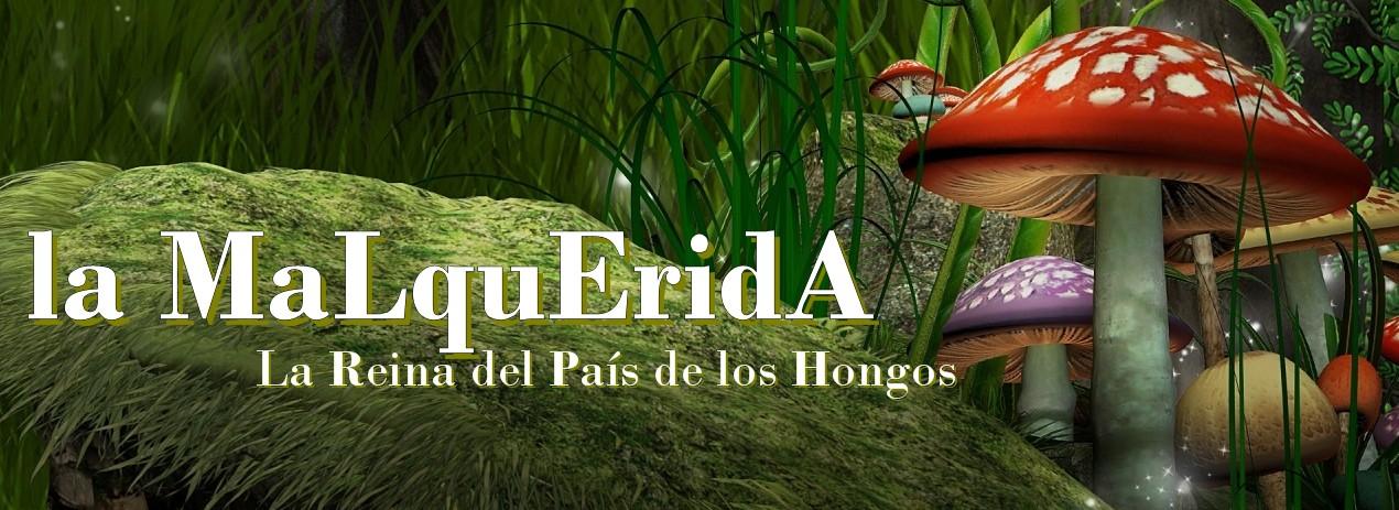 la MaLquEridA