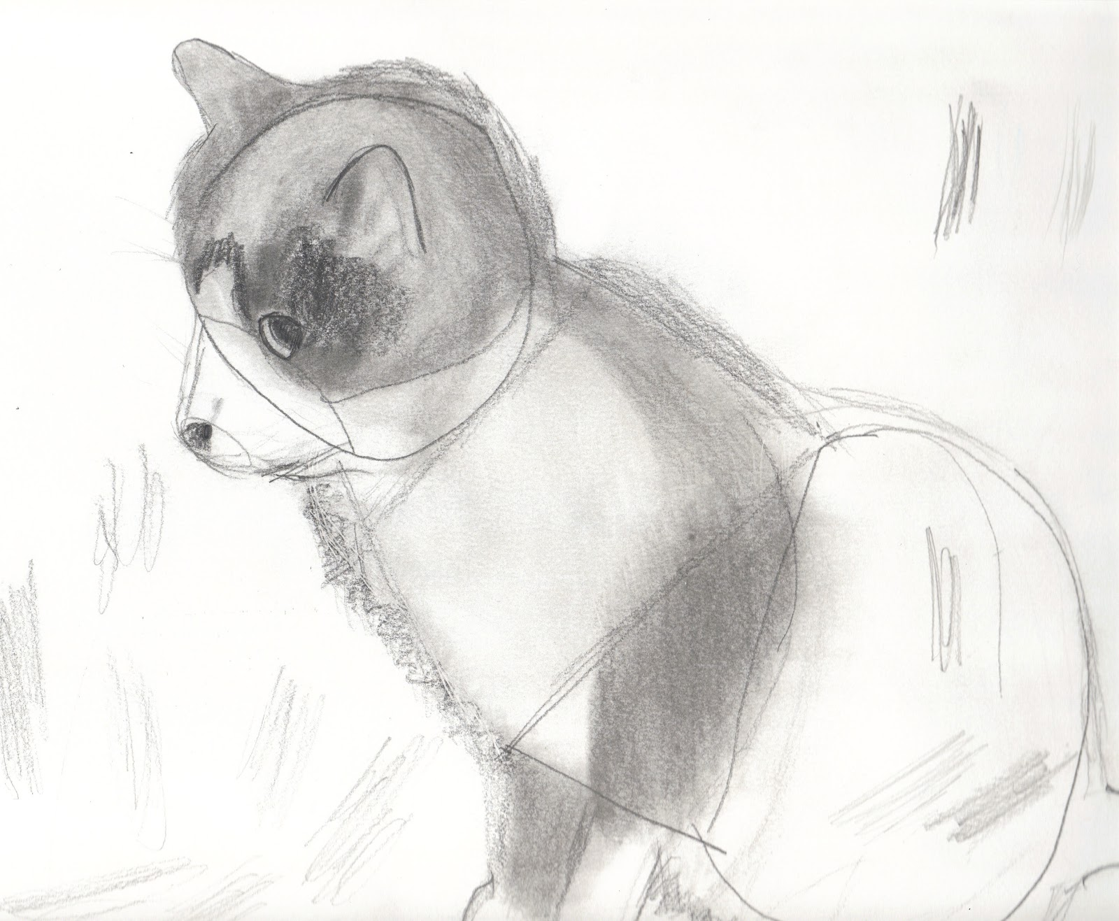 Tranches d 39 histoires d 39 une travailleuse sociale tentative - Dessiner une chatte ...