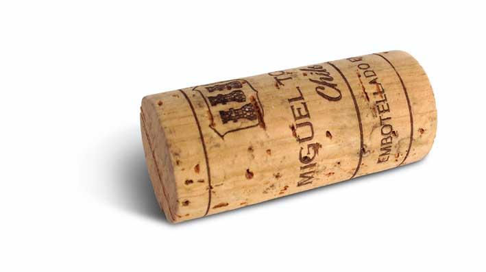 Palabras del vino el corcho y su triste historia - Propiedades del corcho ...