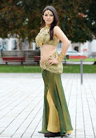 Hansika, hot, navel, show, pics