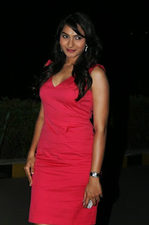 Andrea  Pictures in Short Dress at Aranamanai Audio Launch   (26)