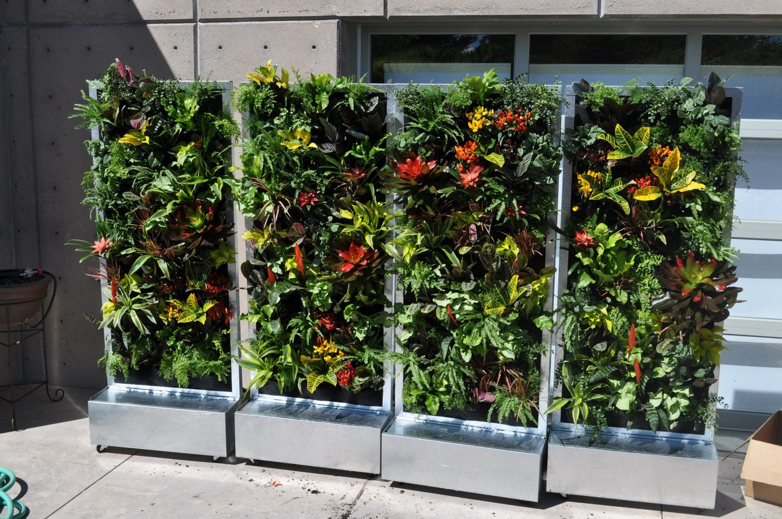 Plants on walls vertical garden systems conservation for Vertical garden designs