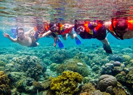 Diving laut bunaken