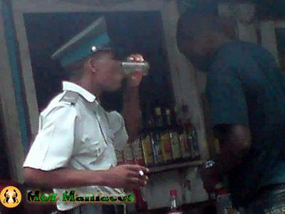 Besteiras de Moçambique Cinzentinho