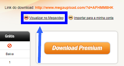 megaupload-visualizar-filme-avi-antes-do-download