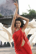 Surveen Chawla Hot Photos-thumbnail-2