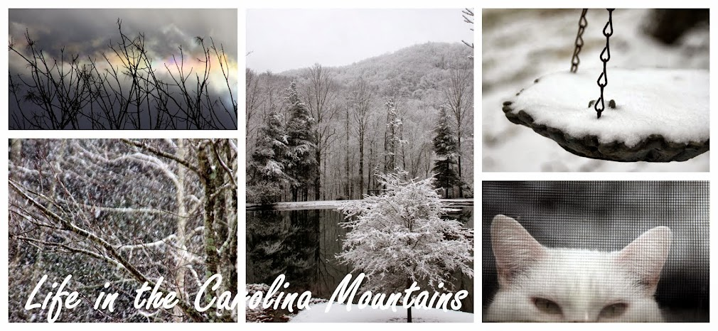 Life in the Carolina Mountains