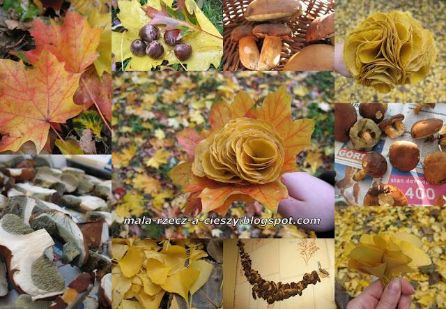 """""""Pamiętasz, była jesień..."""" o jesiennych darach lasu i parku"""