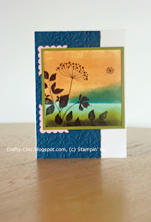 stampin up, summer silhouettes, scenic stamping, direct to paper