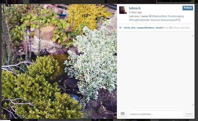 instagram-image-lubnab