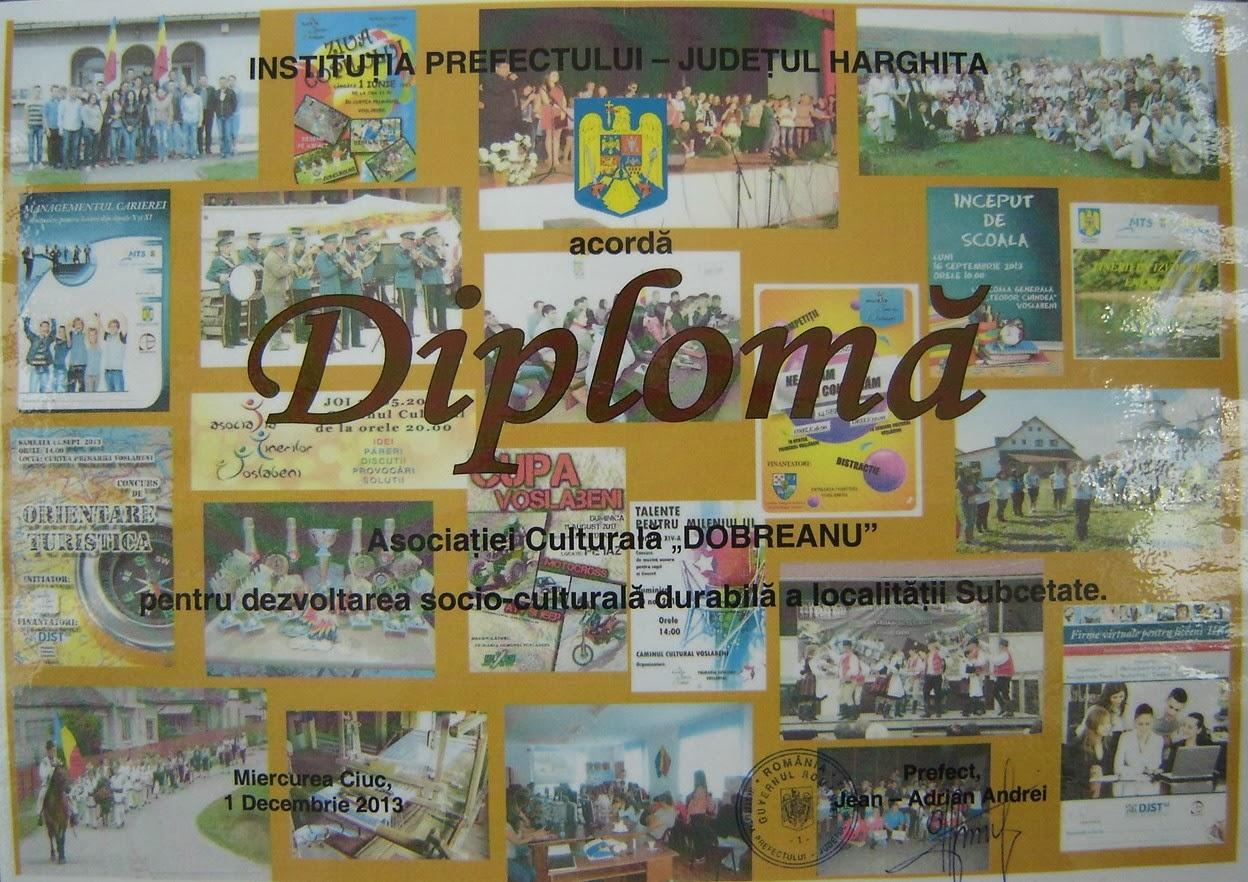 DIPLOMĂ -2013