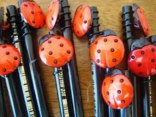 Ponterira de lápis com botões