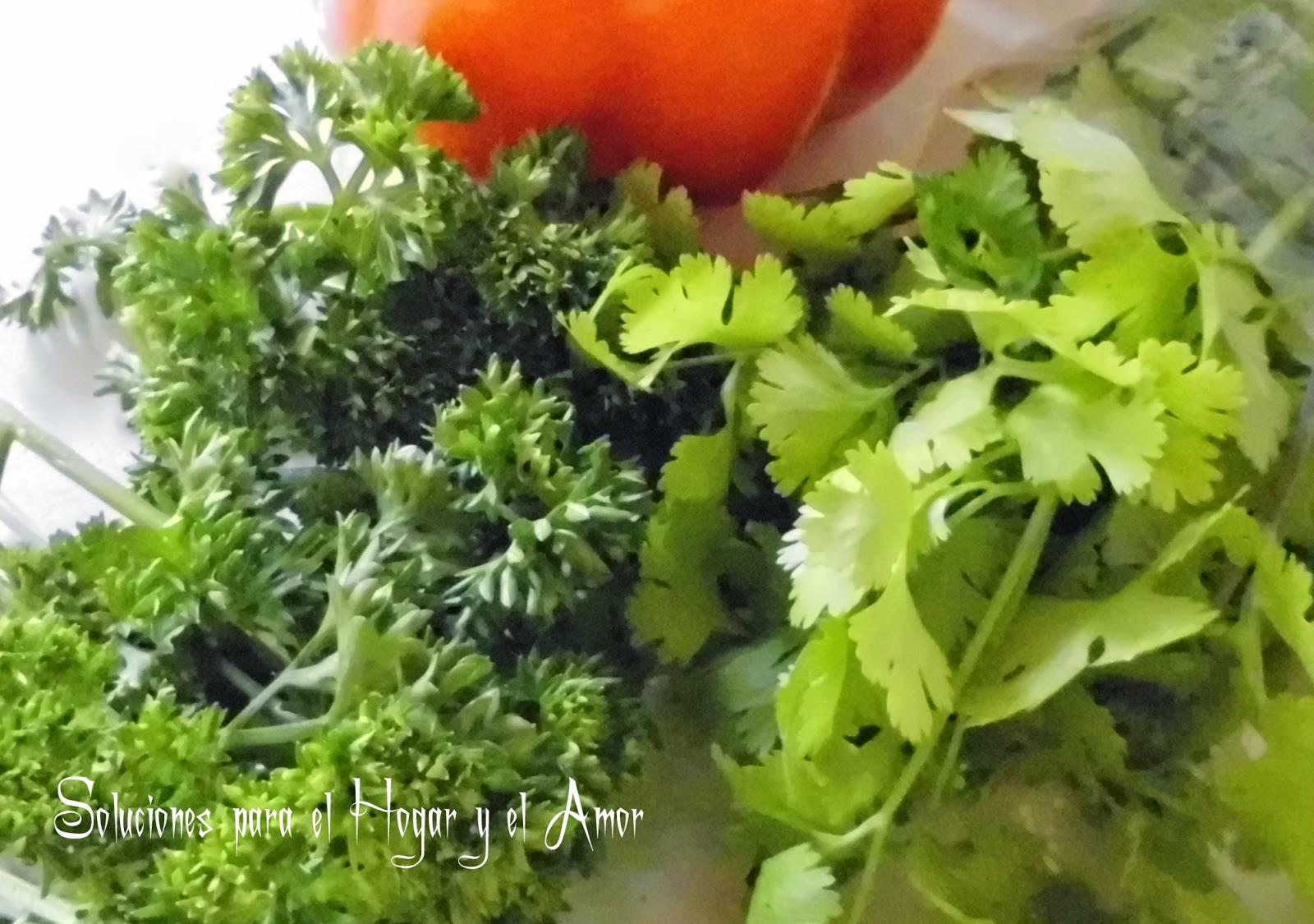 Sopa de Capirotadas, perejil, cilantro, culantro, yerbas aromáticas, receta de cocina