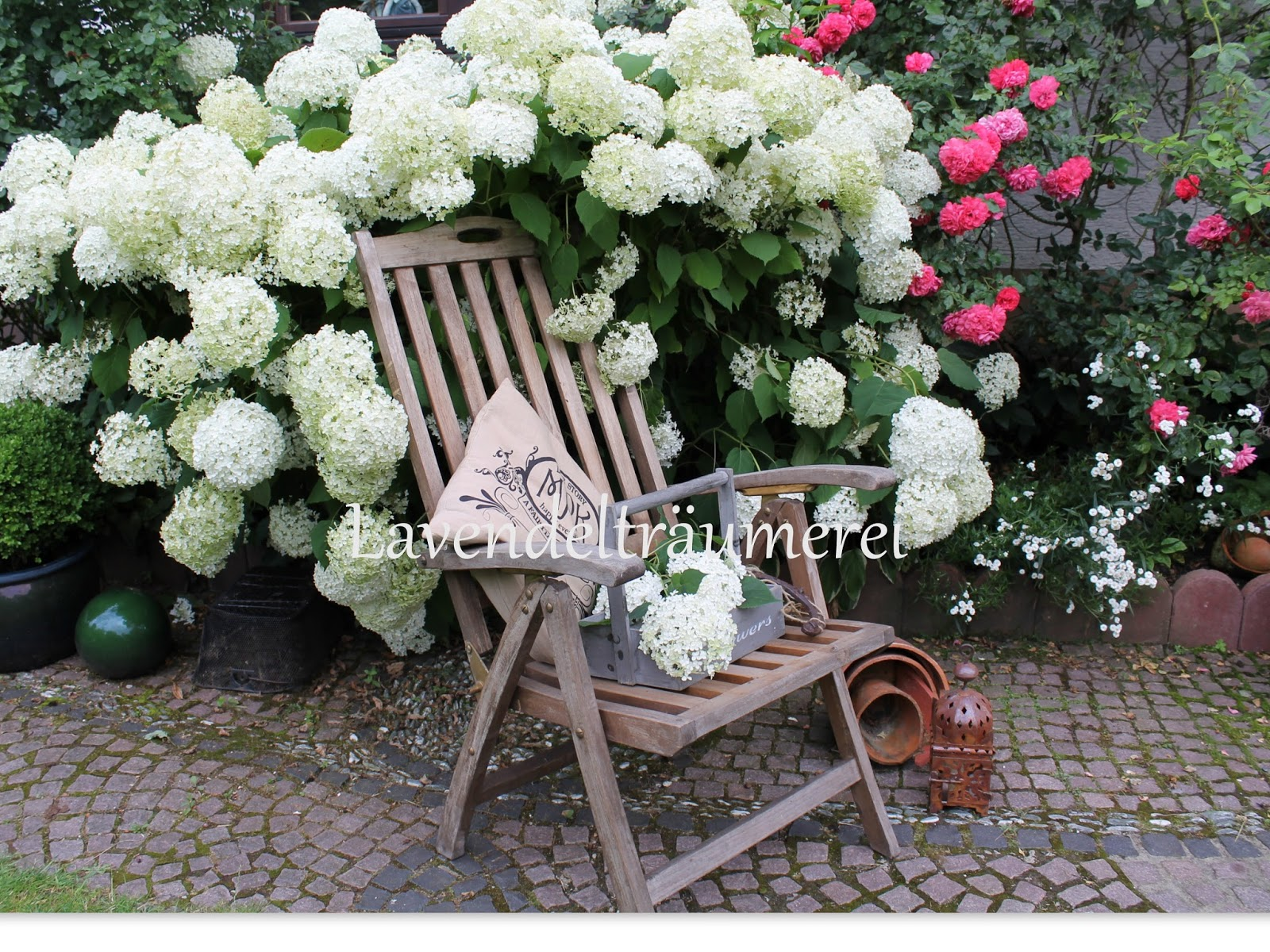 lavendeltr umerei hortensie annabelle im sommergarten. Black Bedroom Furniture Sets. Home Design Ideas