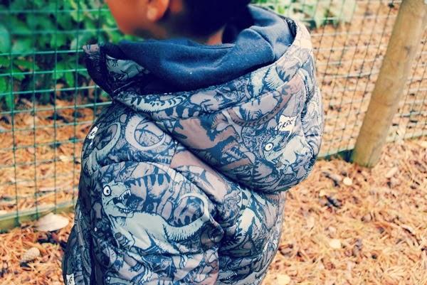 H&M dinosaur coat