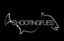 ShootingFlies