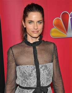 Amanda Peet Returns To Tv