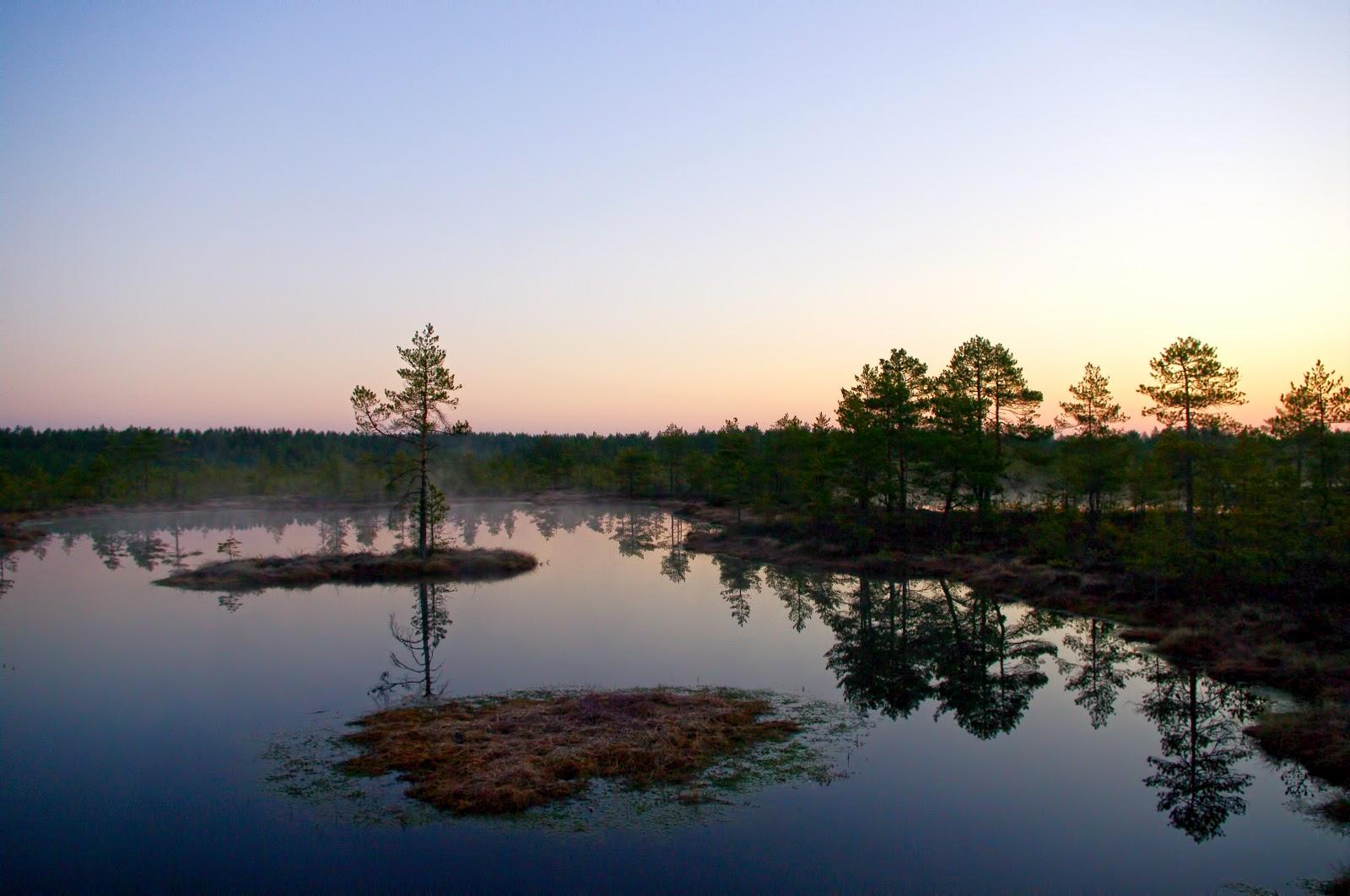 Viru raba õpperada päikesetõus Kalev Vask bog sunrise Eesti loodus Estonian nature loodusrada matkarada