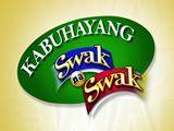 Kabuhayang Swak na Swak February 10, 2018