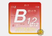 B12 Vitamini suda eriyen bir vitamindir. B12 Vitamini (diğer adıyla Kobalamin), ana görevi kırmızı kan hücresi üretimi ve merkezi sinir sistemin korumasıdır.