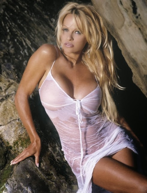 Pamela Anderson Hot Wet Cleavages