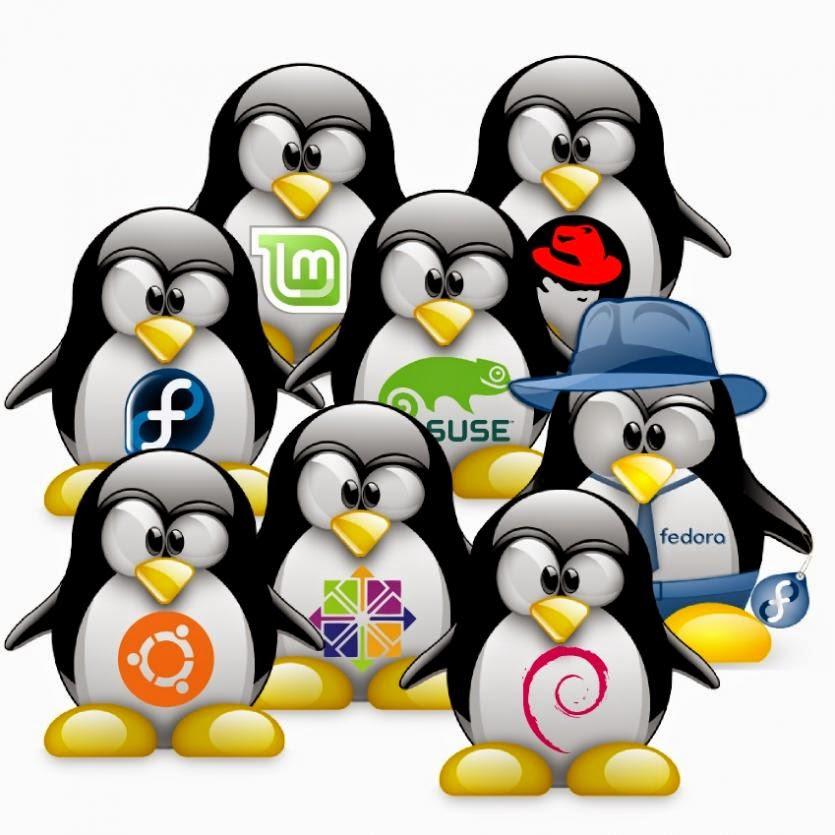 Jenis-jenis distro linux, kelebihan dan kekurangan Linux