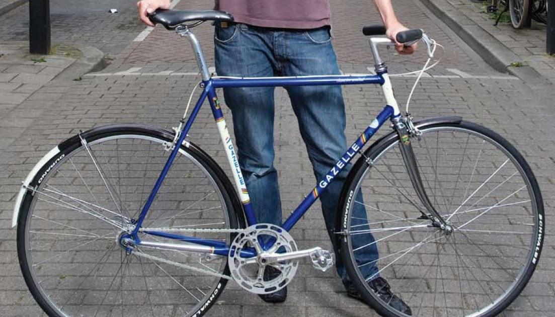 wat is de lichtste e bike