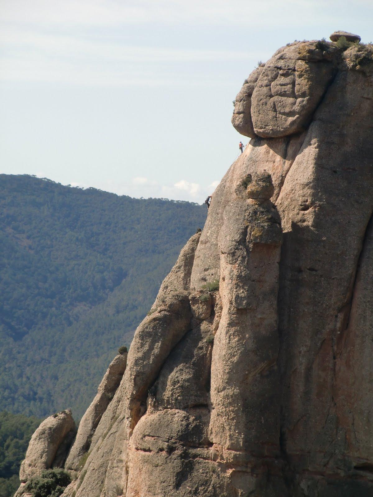 Llun 224 Tics Climbers