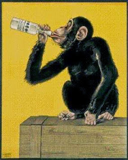 Tale of a Drunk Monkey