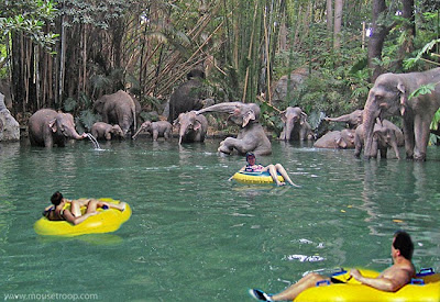 Jungle Cruise Disneyland Innertubes Limted Time Magic elephants