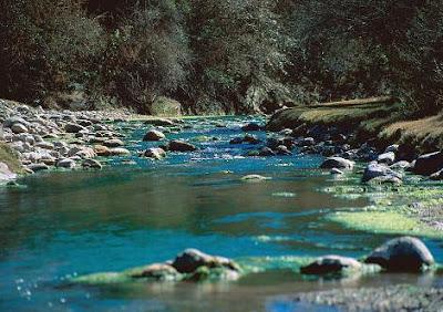 parque nacional el rey ecotourism