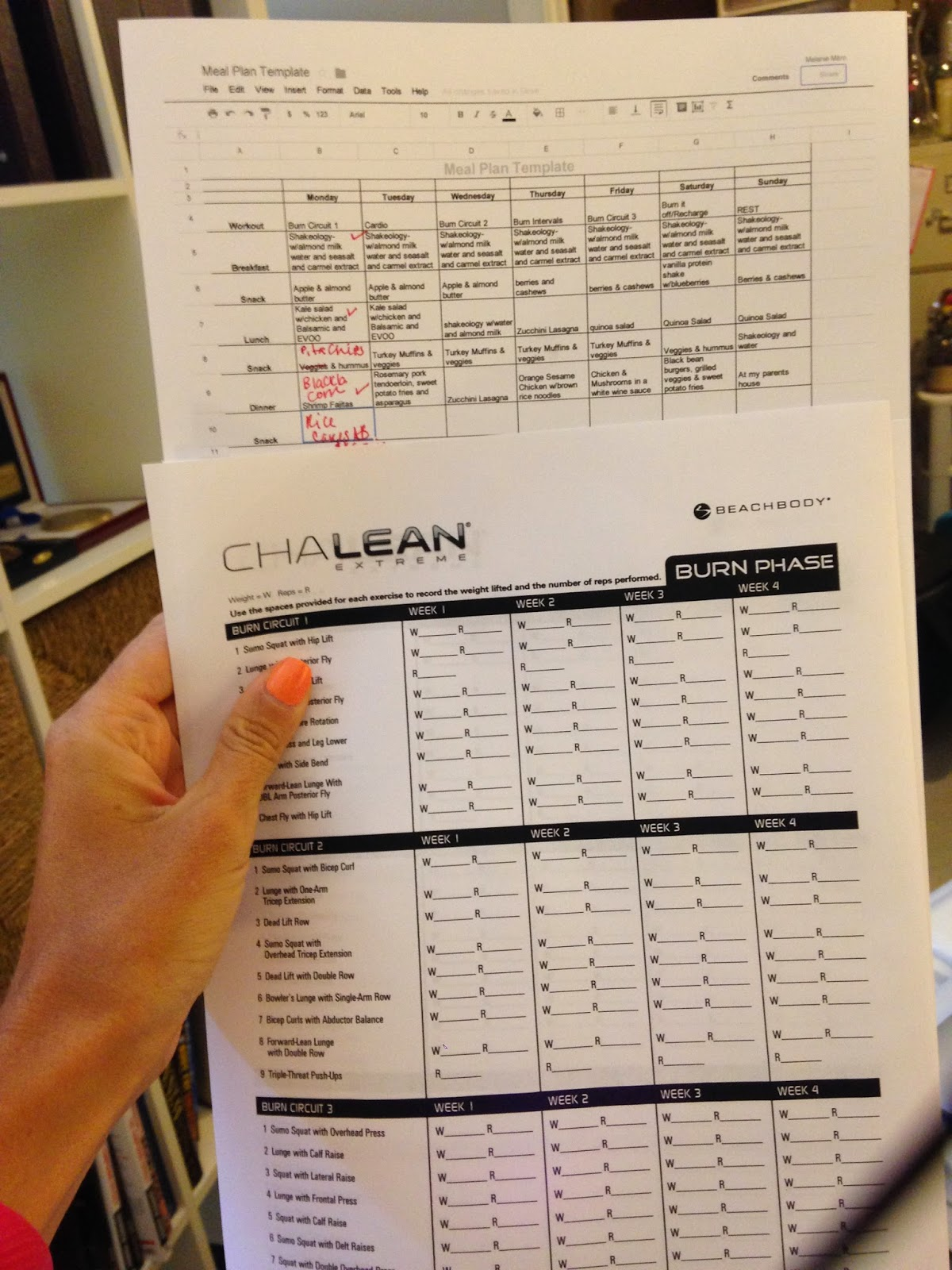 Chalean Extreme Tracking Sheets