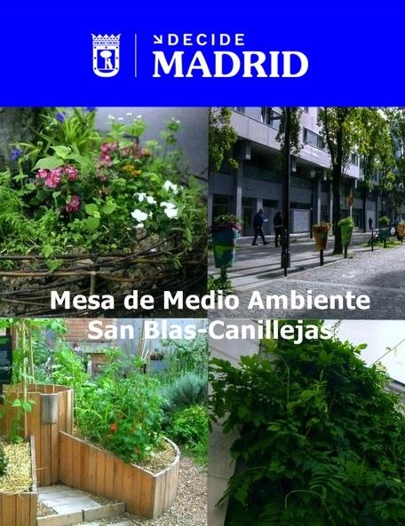 Madrid florece: El permiso Manos Verdes