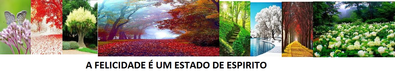 FELICIDADE, UM ESTADO DE ESPIRITO