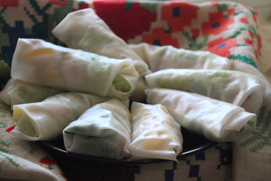 my winter spring rolls