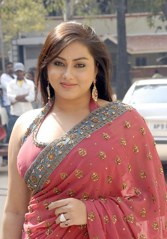 Namitha Hot Saree