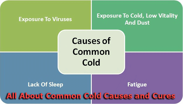 All About Common Cold Causes and Cures