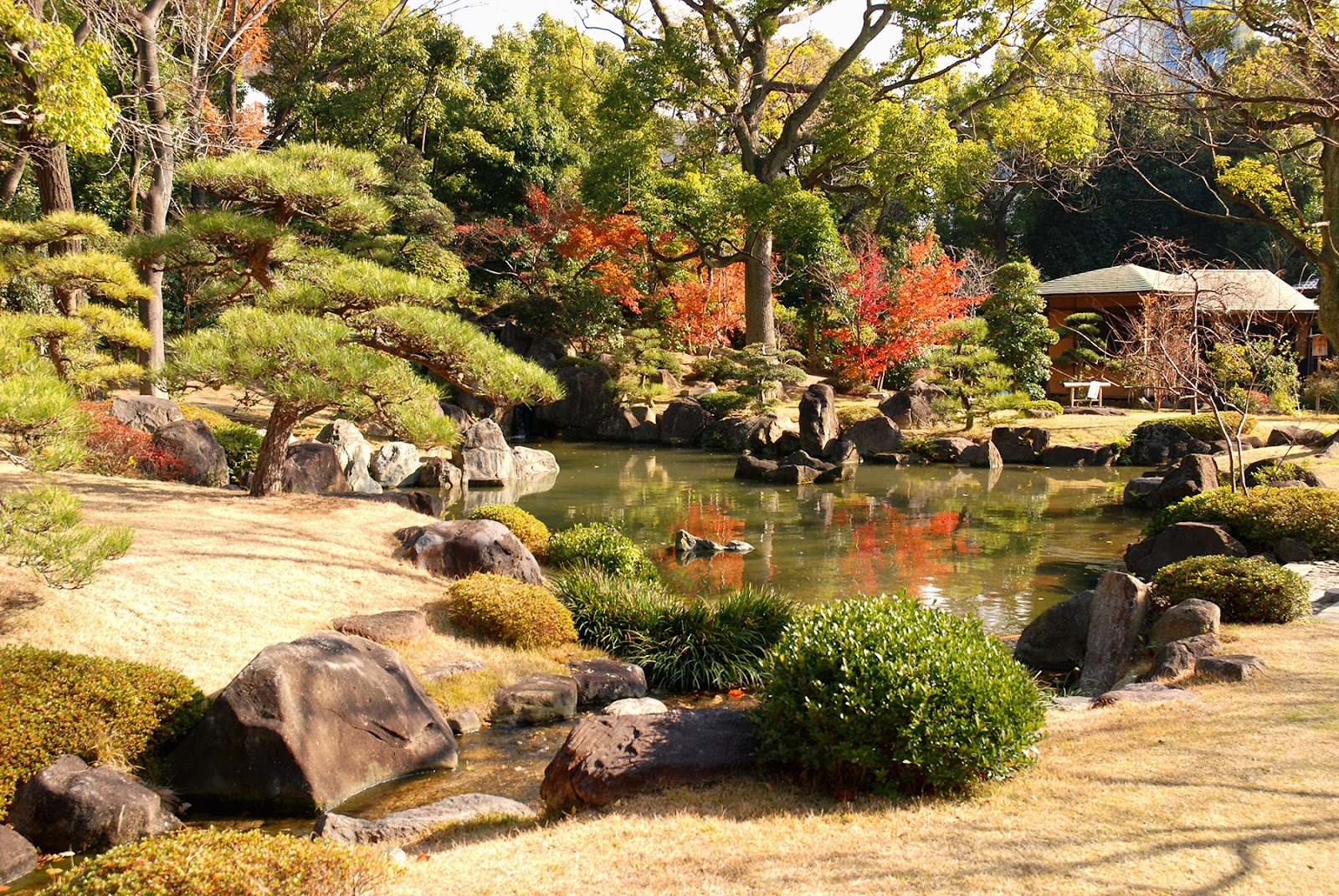Moving subjects japanese gardens temples part 1 for Japanese meditation garden