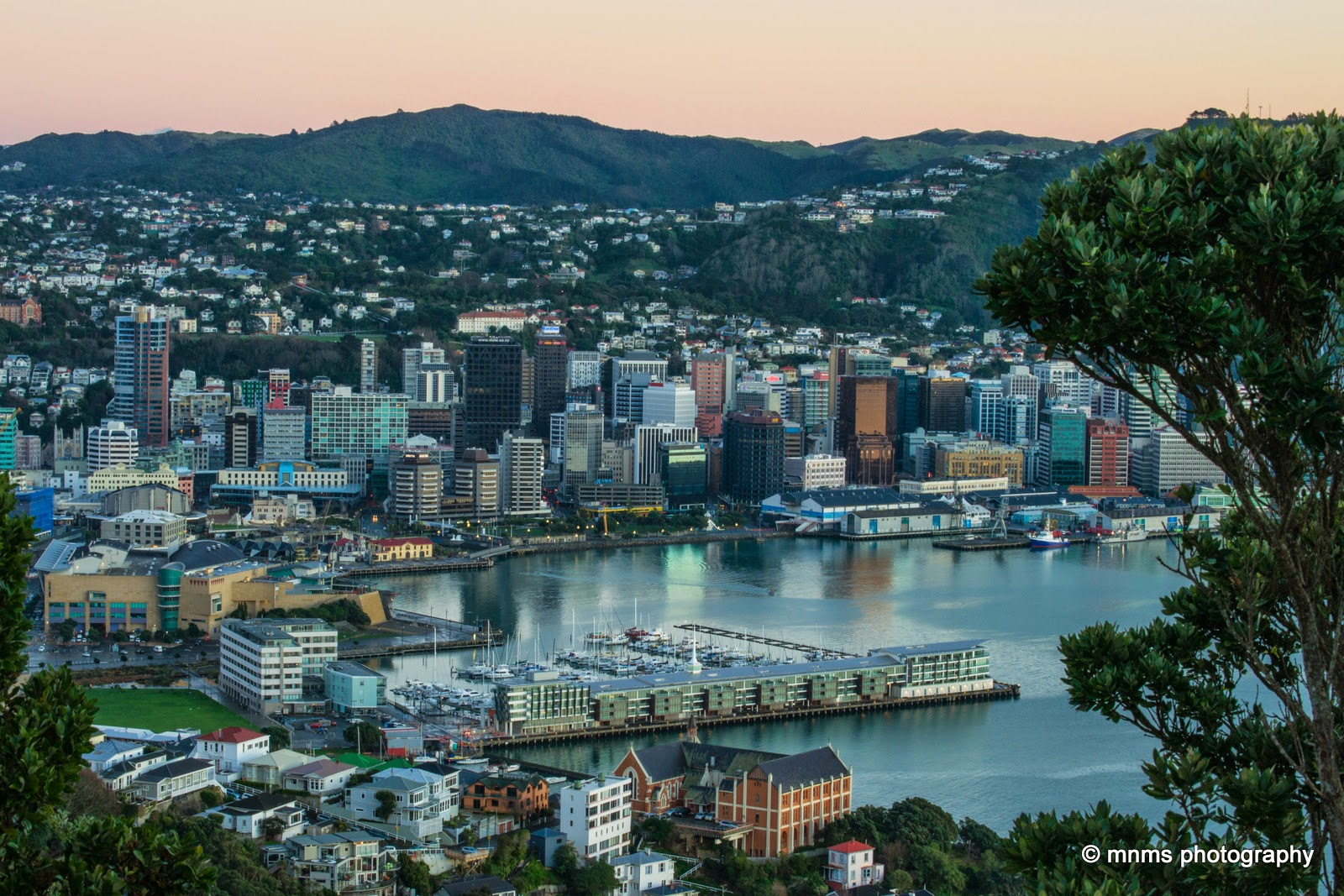 Dawn from Mount Victoria Wellington